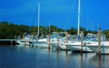 Coconut Grove Homes and Condos for Sale