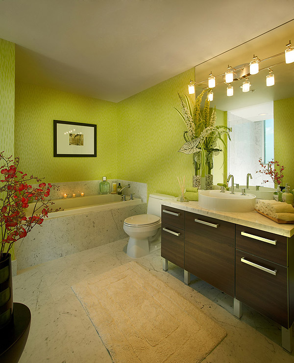 viscayne-2402-bath